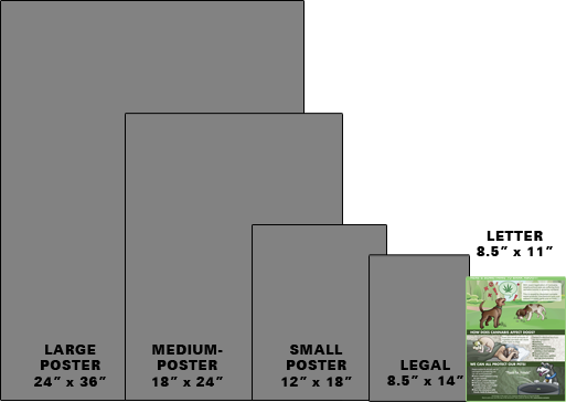 Paper Size Printing Choices - Letter